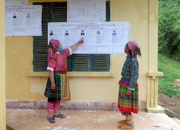 Les elections legislatives au Vietnam seront couronnees de succes hinh anh 6