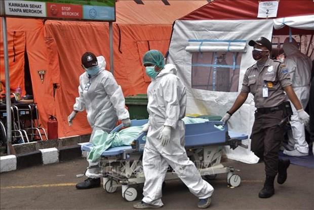 COVID-19 : l'Indonesie durcit des mesures preventives, les hopitaux debordes hinh anh 1