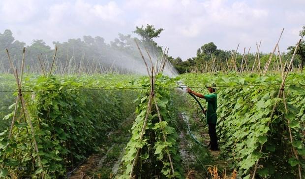 Publication du rapport 2021 sur l'agriculture numerique au Vietnam hinh anh 1