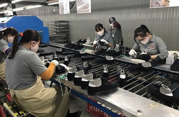 Opportunite pour les exportations du Vietnam apres la ratification peruvienne du CPTPP hinh anh 1