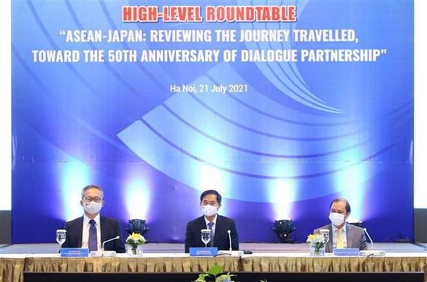 Le Vietnam œuvre pour le renforcement des liens ASEAN – Japon hinh anh 2