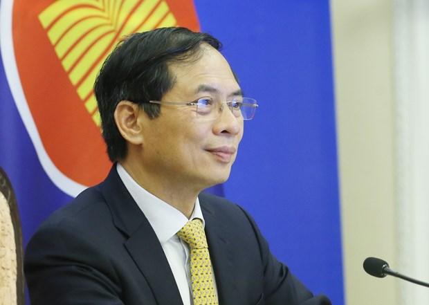 Le Vietnam a la reunion des ministres des Affaires etrangeres ASEAN – Australie hinh anh 2