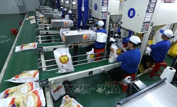 Le Vietnam exporte 3,58 millions de tonnes de riz en sept mois hinh anh 1