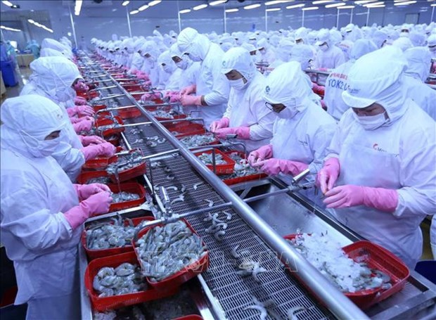 Les exportations de produits aquatiques atteignent 4,88 milliards de dollars en sept mois hinh anh 1