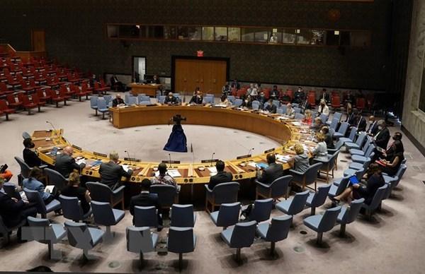 Le Conseil de securite de l'ONU acheve l'ordre du jour d'aout hinh anh 1