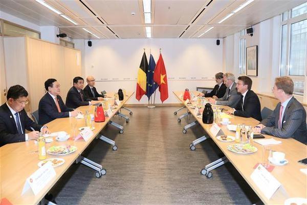 Le Vietnam souhaite renforcer la cooperation dans tous les domaines avec la Belgique hinh anh 2