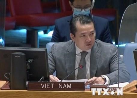 CDS de l'ONU : le Vietnam a des reunions sur les situations au Soudan du Sud et en Syrie hinh anh 1