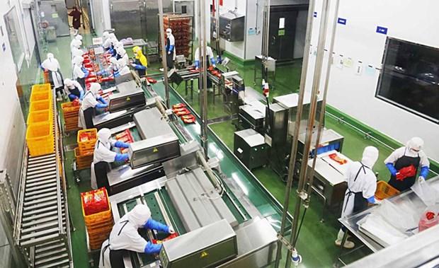 Hanoi cherche a ameliorer ses capacites de transformation de produits agricoles hinh anh 2