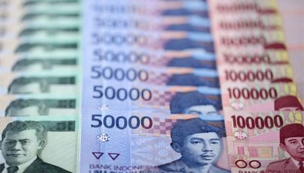La dette exterieure de l'Indonesie toujours dans la marge de securite hinh anh 1