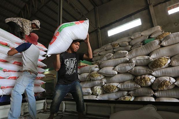 Les exportations de riz du Cambodge continuent de baisser hinh anh 1