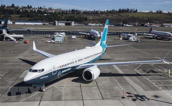 Singapour suspend l'exploitation des Boeing 737 Max hinh anh 1