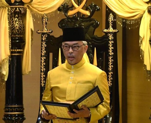Le roi de Malaisie appelle a l'unite nationale hinh anh 1