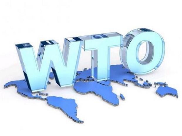 La Thailande appelle l'ASEAN a retablir le systeme multilateral de l'OMC hinh anh 1