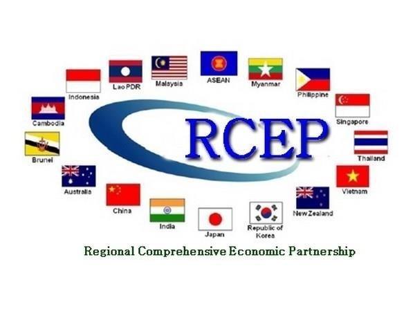 Singapour s'attend a l'achevement du RCEP cette annee hinh anh 1