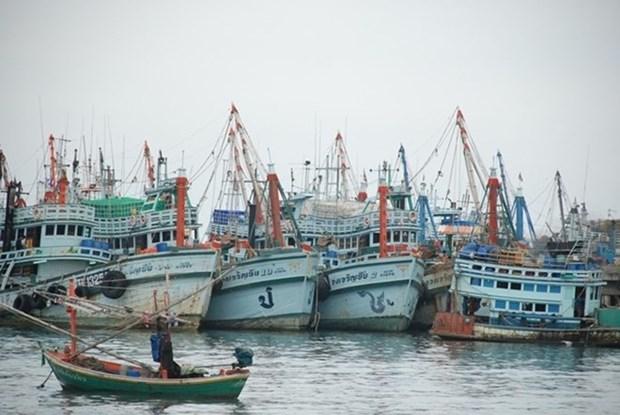 La Thailande et l'UE discutent de la peche INN hinh anh 1