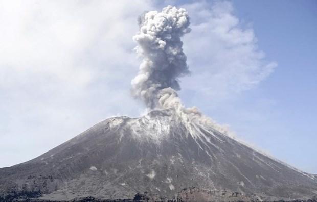 L'Indonesie installera un systeme d'alerte precoce aux tsunamis pres du mont Krakatau hinh anh 1