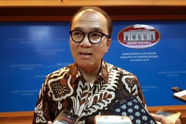 L'Indonesie cherche des opportunites de cooperation avec les pays du Pacifique Sud hinh anh 1