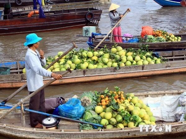 Commerce : le delta du Mekong vise le marche russe hinh anh 1