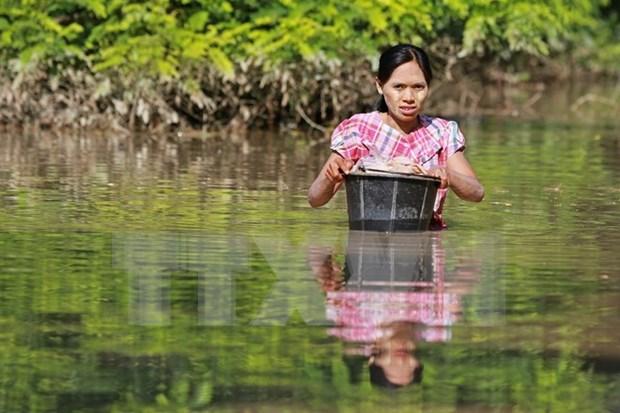 Innondations : L'ASEAN s'efforce d'aider les sinistres au Myanmar hinh anh 1