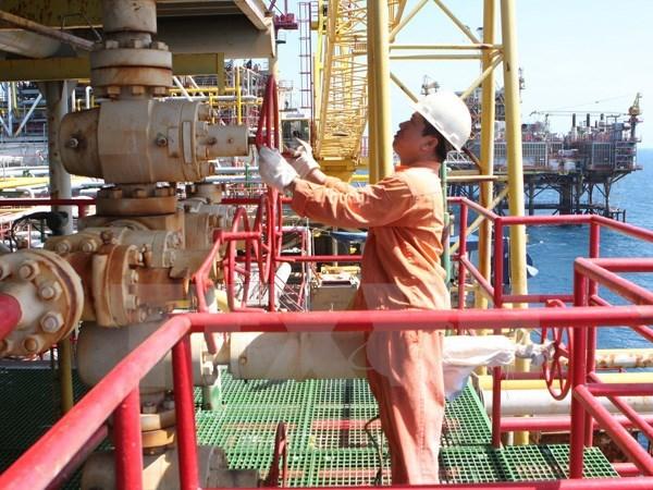 PetroVietnam : le projet en Algerie demarre sa production hinh anh 1