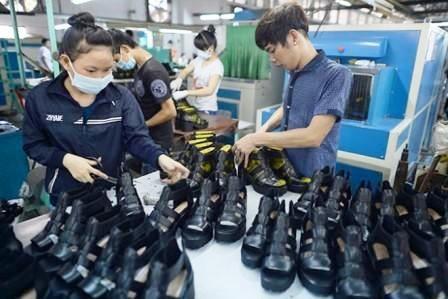 Vietnam – Bresil: le commerce bilateral prend son envol hinh anh 1
