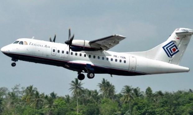 Indonesie : l'epave de l'avion disparu retrouvee dans les montagnes de Papouasie hinh anh 1
