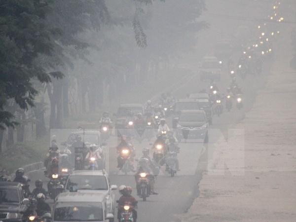 Sub-region du Mekong : mieux controler la pollution par les fumees hinh anh 1
