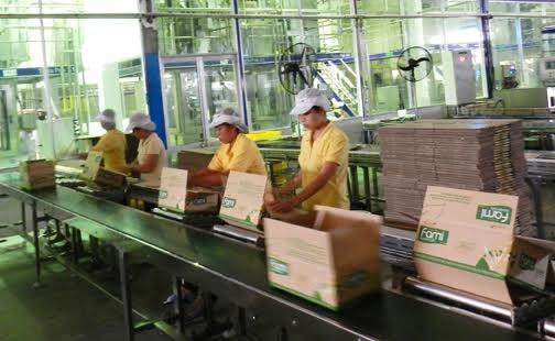 Vinasoy figure parmi les 5 premiers fabricants de lait de soja dans le monde hinh anh 1