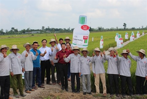Transfert des connaissances sur la protection vegetale aux paysans hinh anh 1