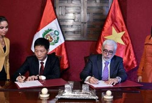 Vietnam et Perou creent un comite intergouvernemental hinh anh 1