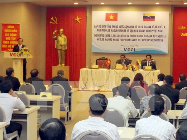 Promotion de la cooperation multiforme Vietnam-Venezuela hinh anh 1