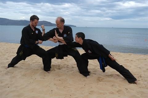 Les arts martiaux traditionnels vietnamiens, une place au soleil hinh anh 1