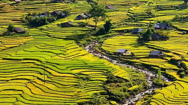 Le Figaro : les 10 sites et attractions incontournables au Vietnam hinh anh 5