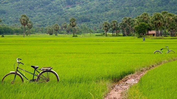 Le Figaro : les 10 sites et attractions incontournables au Vietnam hinh anh 8
