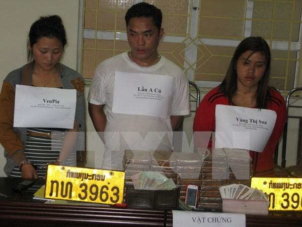 Vietnam-Laos : cooperation provinciale dans la lutte contre la drogue hinh anh 1