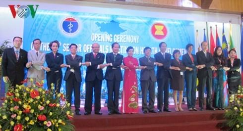 La 10e reunion des hauts officiels sur le developpement de la sante de l'ASEAN hinh anh 1