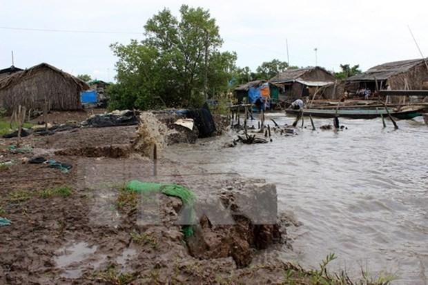 Catastrophes naturelles : l'APEC renforce la gestion communautaire hinh anh 1