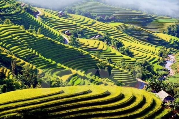 Semaine culturelle et touristique des rizieres en terrasse de Hoang Su Phi hinh anh 1