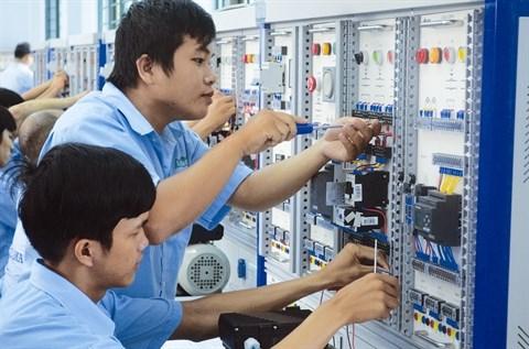 Dans le delta du Mekong, priorite aux ressources humaines hinh anh 1