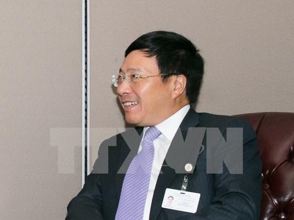Renforcement de la cooperation entre le Vietnam et le Cameroun hinh anh 1