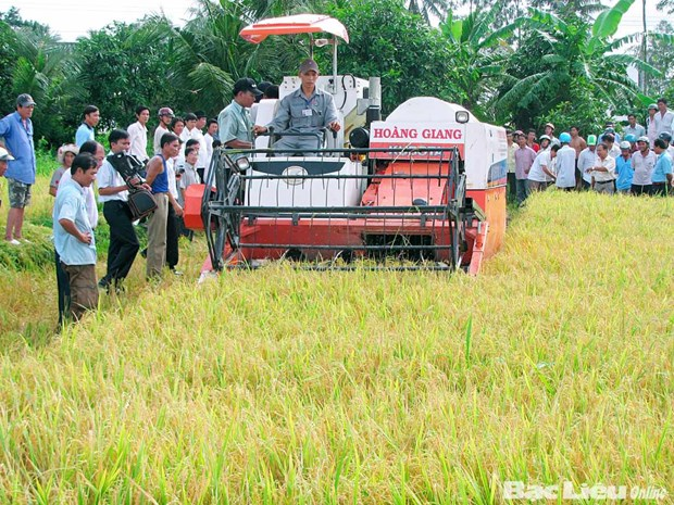 Lam Dong : 175 milliards de dongs pour l'edification de la Nouvelle ruralite hinh anh 1