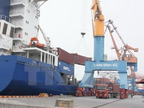 Le port maritime de Dinh Vu va prendre une nouvelle dimension hinh anh 1