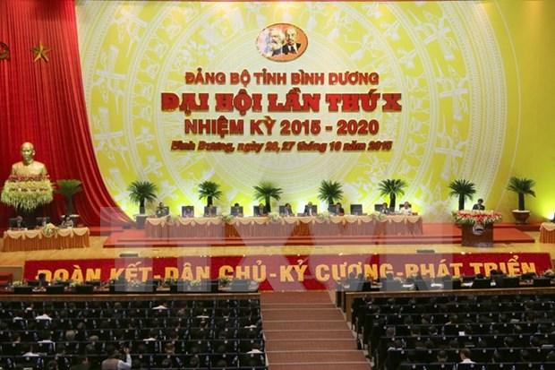 Congres de l'organisation du PCV pour Binh Duong hinh anh 1