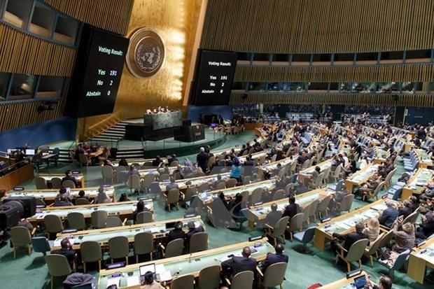 Le Vietnam salue la resolution de l'ONU appelant la levee de l'embargo contre Cuba hinh anh 1