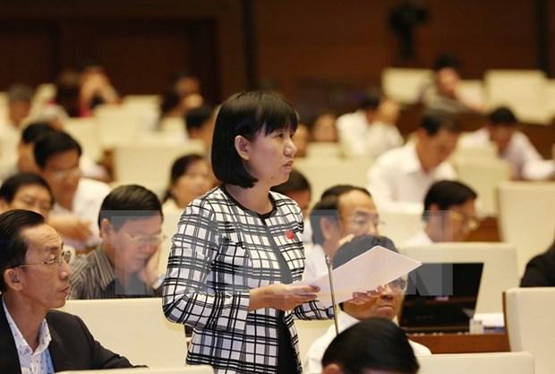 Assemblee nationale : les deputes discutent de projets de loi importants hinh anh 1