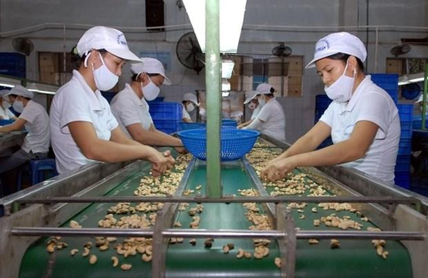L'UE est prete a aider les entreprises vietnamiennes hinh anh 1