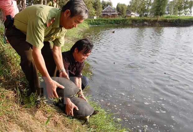 Le Danemark continue d'aider le Vietnam dans la preservation de la biodiversite hinh anh 1