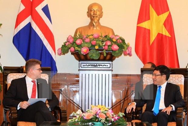 Le chef de la diplomatie rencontre des responsables britannique, belge et islandais hinh anh 2