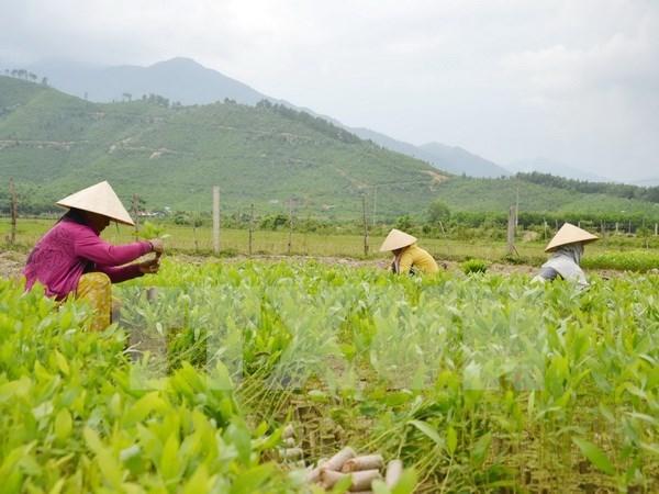 ASEM : le Vietnam promeut les Objectifs de Developpement durable hinh anh 1