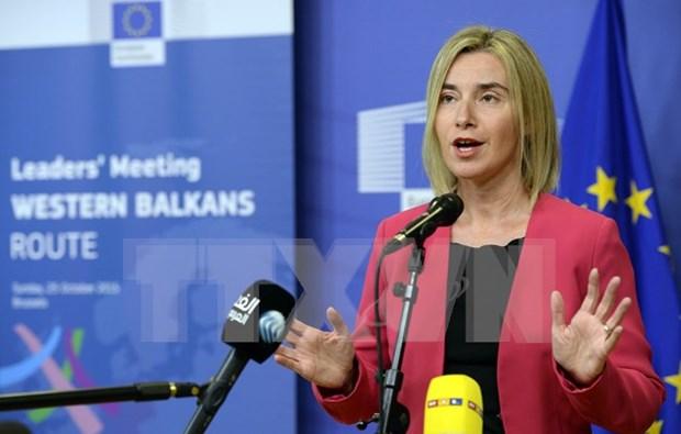 L'UE appelle au reglement des differends en Mer Orientale hinh anh 1